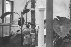 Allie Walbridge and one of his sisters standing near the alligator aquarium Source: Walbridge Foundation